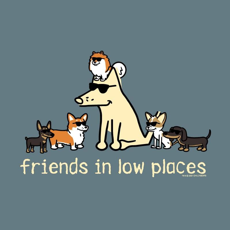 Friends In Low Places - Lightweight Tee