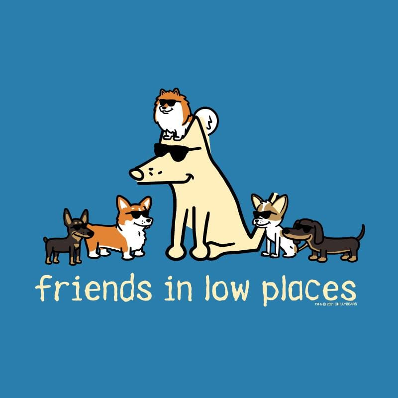 Friends In Low Places - Ladies T-Shirt V-Neck