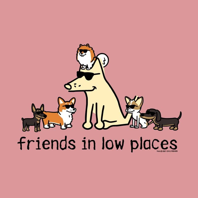 Friends In Low Places - Ladies Curvy V-Neck Tee