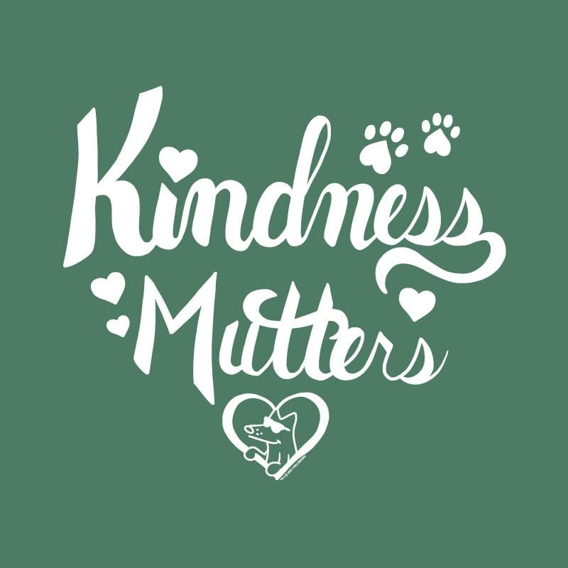Kindness Mutters - Lightweight Tee