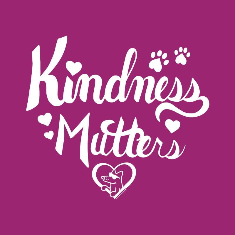 Kindness Mutters - Ladies T-Shirt V-Neck