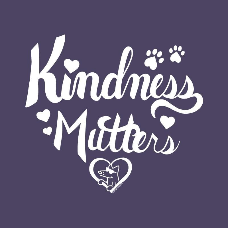 Kindness Mutters - Ladies Curvy V-Neck Tee