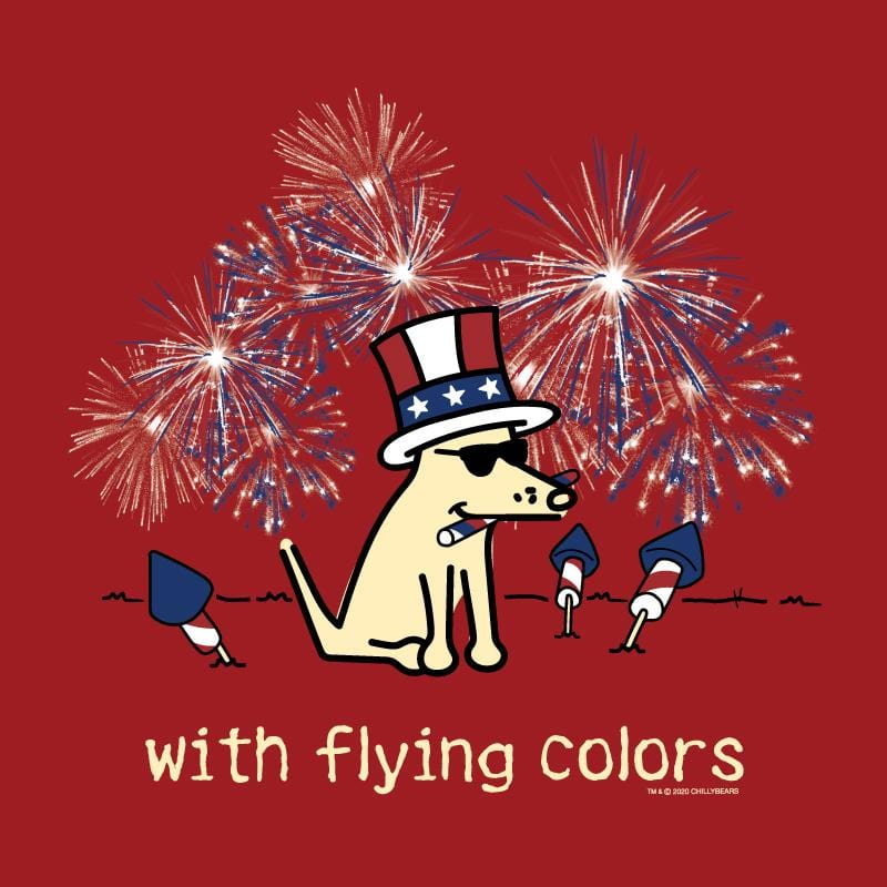 With Flying Colors - Ladies T-Shirt V-Neck