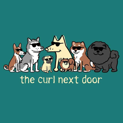 The Curl Next Door - Ladies T-Shirt V-Neck