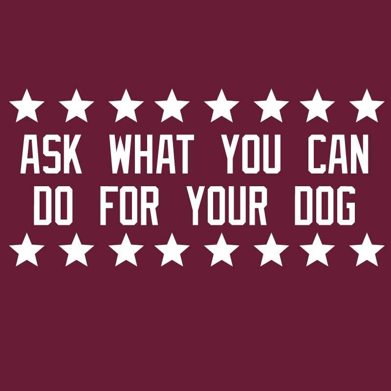 Ask Not What Your Dog Can Do For You - Ladies T-Shirt Crew Neck