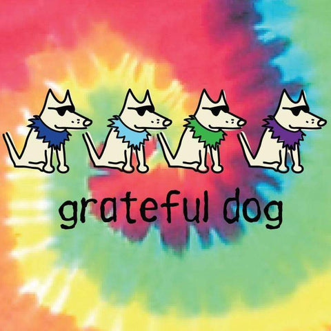 grateful dog garment dyed classic t-shirt