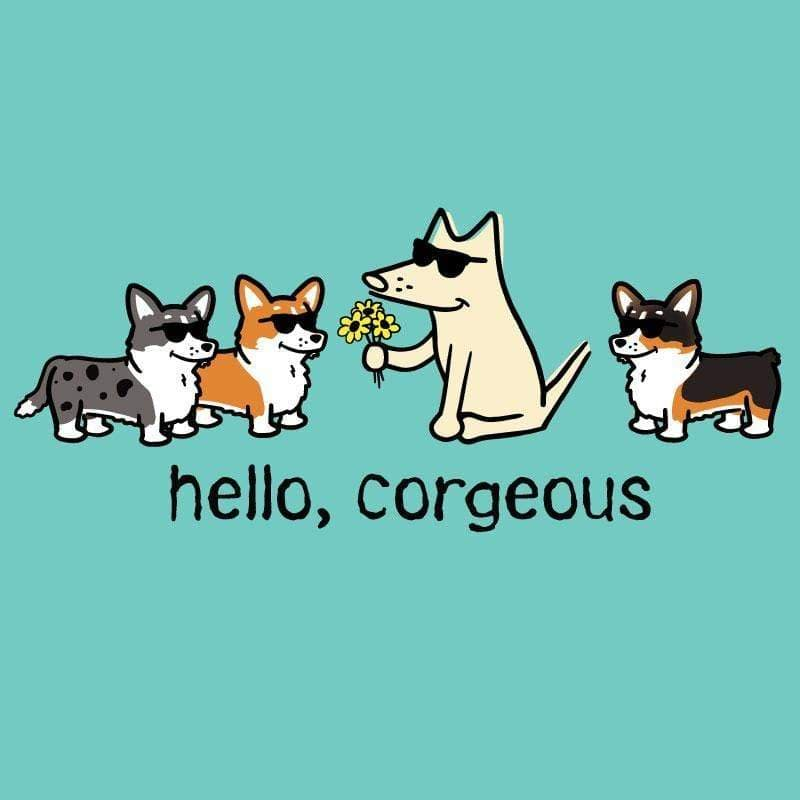 Hello, Corgeous - Ladies Curvy V-Neck Tee - Teddy the Dog T-Shirts and Gifts