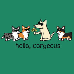 Hello, Corgeous - Ladies T-Shirt V-Neck