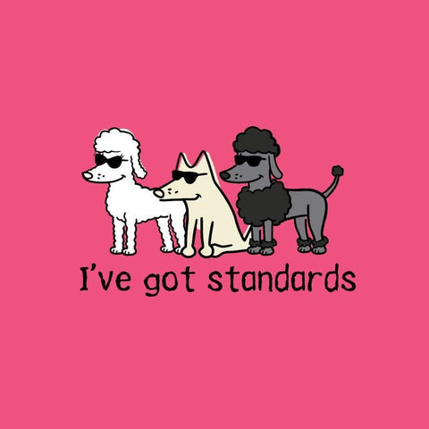 I've Got Standards - Ladies Curvy V-Neck Tee