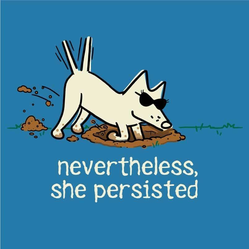Nevertheless, She Persisted - Ladies T-Shirt V-Neck