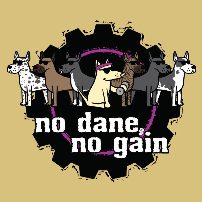 No Dane, No Gain - Ladies T-Shirt V-Neck