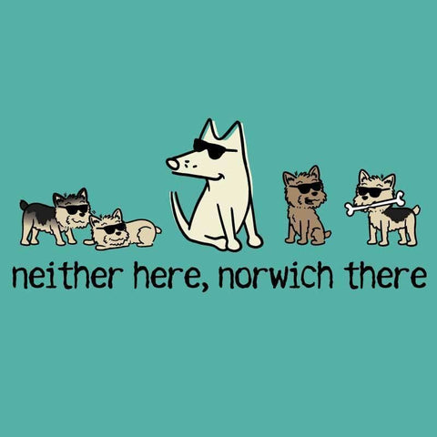 Neither Here, Norwich There - Ladies T-Shirt V-Neck