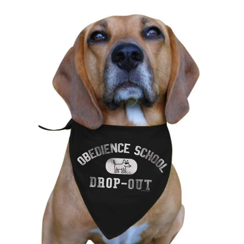 Obedience School Drop Out - Doggie Bandana