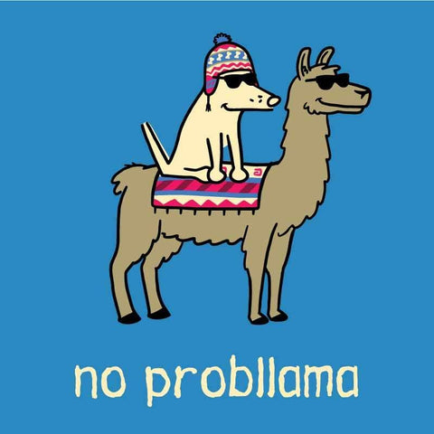No Probllama - Ladies Night T-Shirt