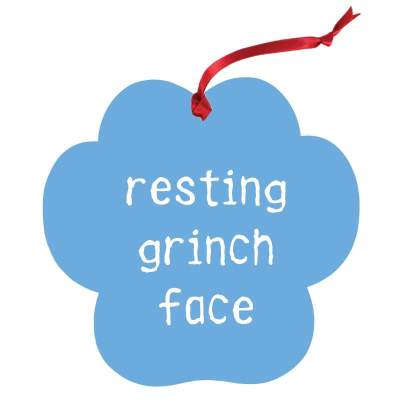Resting Grinch Face - Aluminum Christmas Ornament