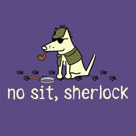 No Sit, Sherlock - Ladies T-Shirt V-Neck