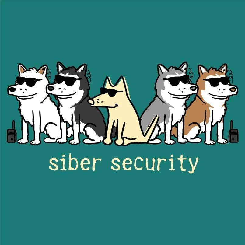 Siber Security - Ladies T-Shirt V-Neck