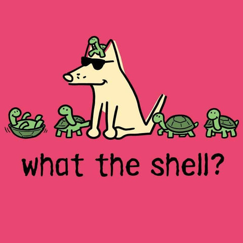 What The Shell? - Ladies Curvy V-Neck Tee