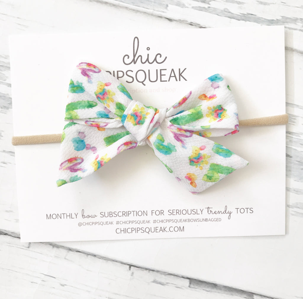 Colorful Cactus Hand Tied Pipsqueak Bow