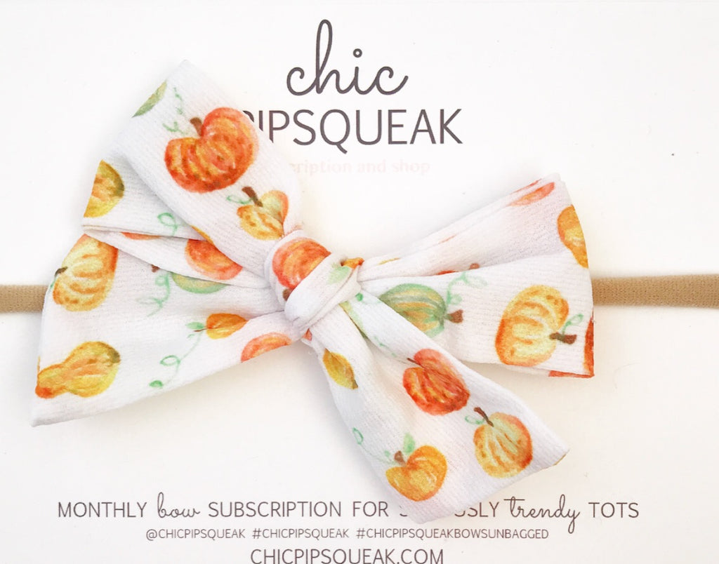 Hand-Tied Bow- Pumpkins and Gourds
