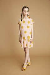 Pippi Dress