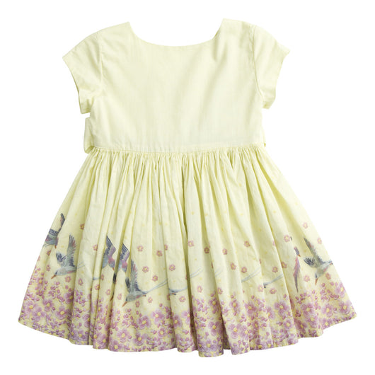 Dorothy Daisy Yellow Dress