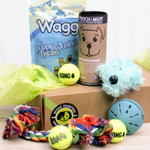 Lucky Puppy Small Dog Hamper