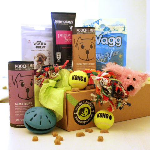 Lucky Puppy Deluxe Dog Hamper
