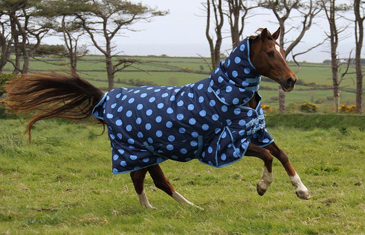 200g Blue Spotty Medium Turnout Rug