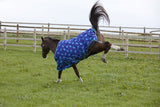 0g Lightweight turnout rug