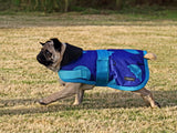 Blue Umbrellas Dog Coat