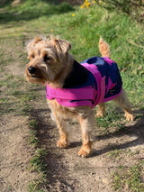 .NEW Pink Stars Waterproof Dog Coat