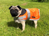 Orange Waterproof Dog Coat