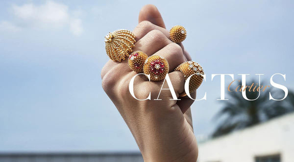 Desert Flowers: Cactus de Cartier Collection.