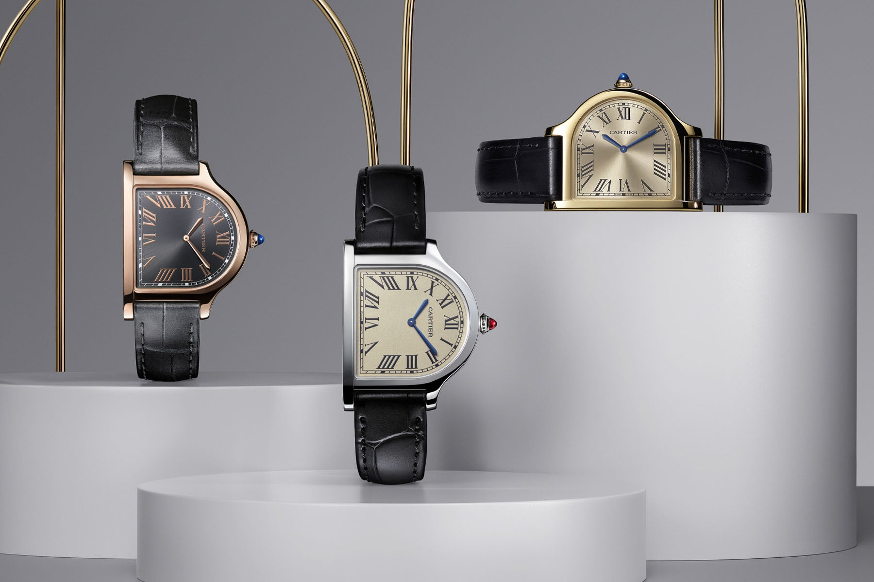 Discover Cartier watches on BitDials