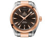Buy original Omega SEAMASTER AQUA TERRA 150M OMEGA CO-AXIAL DAY-DATE 231.20.42.22.06.001 with Bitcoin!