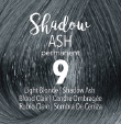 Shadow Ash Permanent Shade Collection
