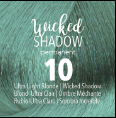 Wicked Shadow Permanent Shade Collection
