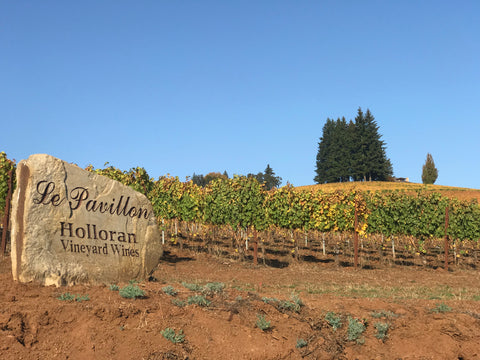 Holloran Vineyard Wines_Fall Color_Le Pavillon