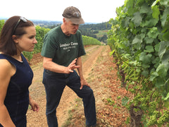 Holloran Vineyard Wines - Bill Holloran