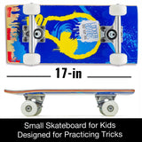 TRAVEL TRICKSTER:<br><b>Dream Hard (17-inch skateboard designed for tricks)</b>