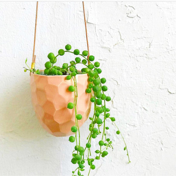 Geometrical Ceramic Planter