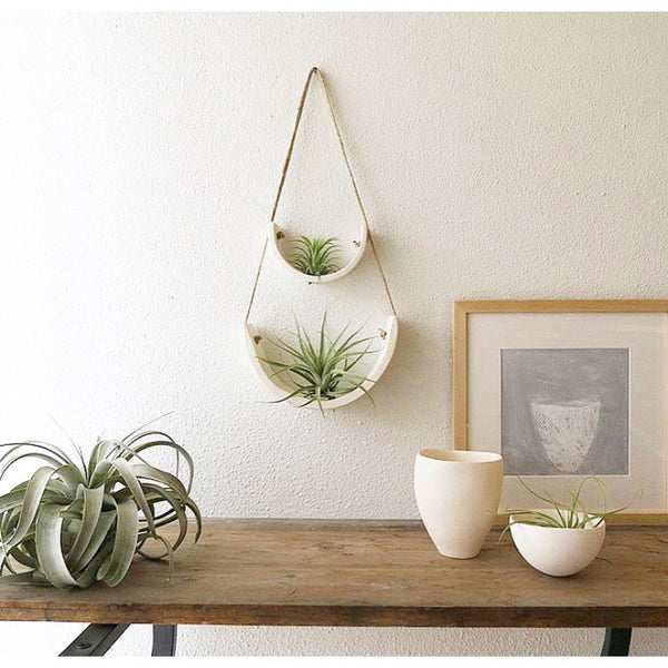 MUDPUPPY HANGING CERAMIC AIR PLANT CRADLE WHITE EARTHENWARE-LARGE