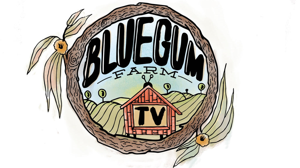 Blue Gum Farm Tv