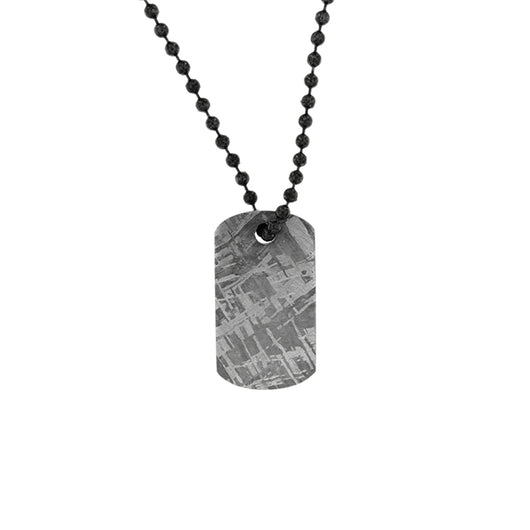 Gibeon Meteorite Small Dog Tag Necklace (1