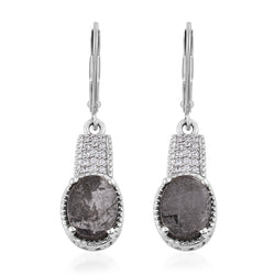 Oval Meteorite Drop Earrings with Lever Back