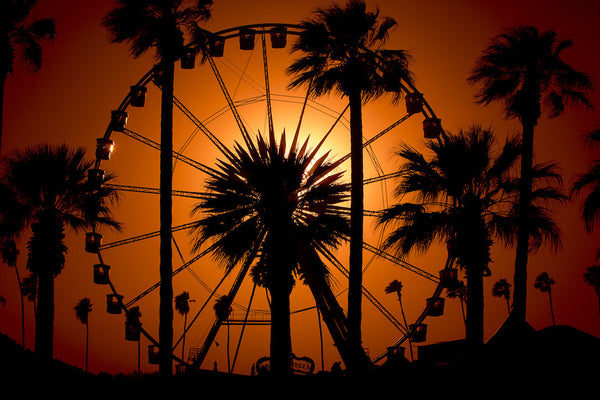 A photo of a ferris wheel at an amusement park during sunset. Photo is a free high resolution stock image to use any way you choose.