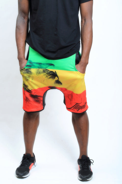 2017 Spring Illigent Men's Rasta Vibe Shorts Lower Front Body