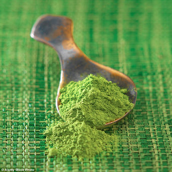 Ancient Japanese powdered green tea