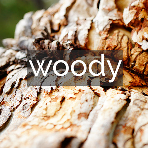 Shop by Scent ~ Woody